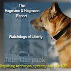 Hagmann & Hagmann Report show