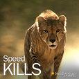 Speed Kills show
