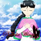 Phoenix Wings show