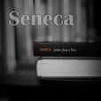 Seneca Letters From a Stoic Podcast: Stoicism | Philosophy | Business show
