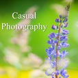 Casual Photography show