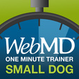 WebMD Healthy Pets: 1-Minute Dog Trainer for Little Dogs show