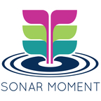 Sonar Moment - Reflections on leadership from CEOs in the Pacific Northwest show