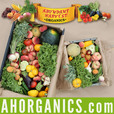 Abundant Harvest Organics show