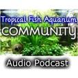 Tropical Fish Aquarium Community » Audio Podcast show