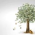 Money Tree Radio show