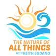 "KEITH SUDANO's ""The Nature of All Things..."" show"