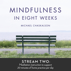 Mindfulness in 8 Weeks: 20 Minutes a Day Program show