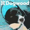 The DogwoodPodcast show