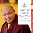 Karmapa - Selected Talks on Buddhism, Philosophy, and Meditation. show