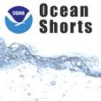 NOAA: Ocean Shorts show