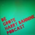 De Grote Harry Bannink Podcast show