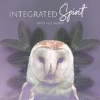 Integrated Spirit show
