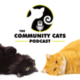 The Community Cats Podcast show