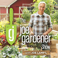 The joe gardener Show - Organic Gardening - Vegetable Gardening - Expert Garden Advice From Joe Lamp'l show