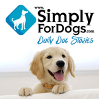 SimplyForDogs|Franklin Medina discusses the latest dog tips,  dog strategies, dog training,  and everything related to dogs show