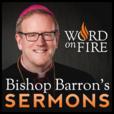 Bishop Robert Barron's Sermons - Catholic Preaching and Homilies show