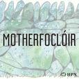 Motherfoclóir show