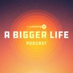 A Bigger Life show
