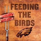 Feeding The Birds show