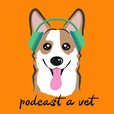 Podcast A Vet: Stories, Support & Community From Leaders In The Veterinary Field show