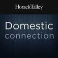 Domestic Connection show