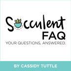 The Succulent FAQ show