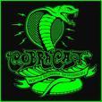 CobraCast Podcast with Bobby Sharron show