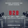 B2B Sales & Marketing Leadership - Growth Hacker for B2B Companies - Sales - VC - Selling - Success - SaaS show