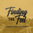 Finding The Feel show