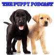 The Puppy Podcast show