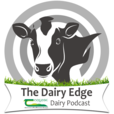 The Dairy Edge show