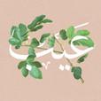 Eib | عيب show