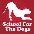 School For The Dogs Podcast - Dog Training & Animal Behavior with Annie Grossman  show