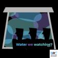 Water We Watching? show