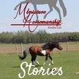 Miniature Horsemanship Stories show