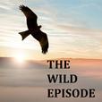 The Wild Episode show