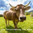 The Interrupting Cow Show show