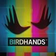 Birdhands show