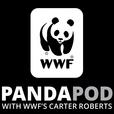 The Panda Pod show