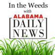 In the Weeds with Alabama Daily News show
