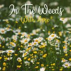 In The Weeds With Anne show