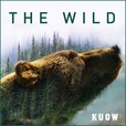 The Wild with Chris Morgan show
