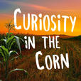 Curiosity In The Corn show