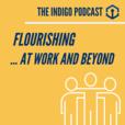 The Indigo Podcast show