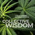 Collective Wisdom show