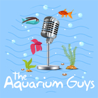 The Aquarium Guys show