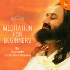 Meditation for Beginners show