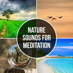 Nature Sounds show