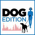 Dog Edition show